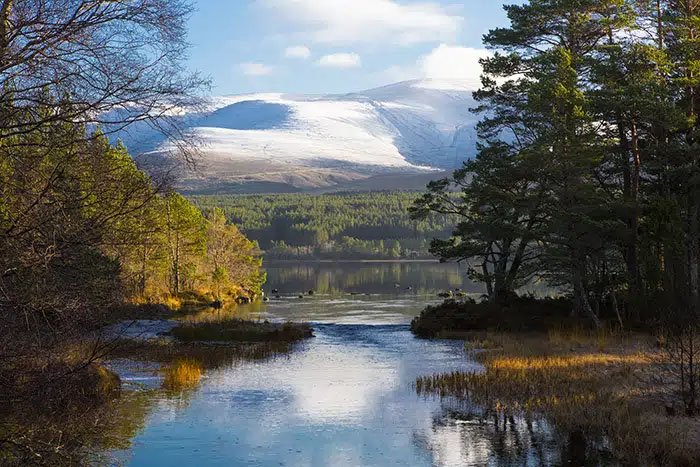 Things to do at Loch Morlich, Aviemore