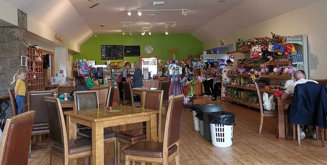 Wynford Farm Park Café   Rustic country Cafe