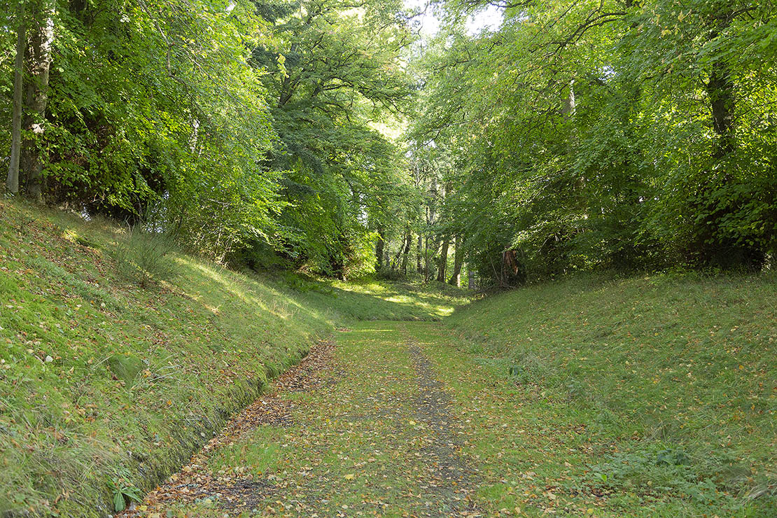 The road to Redcastle