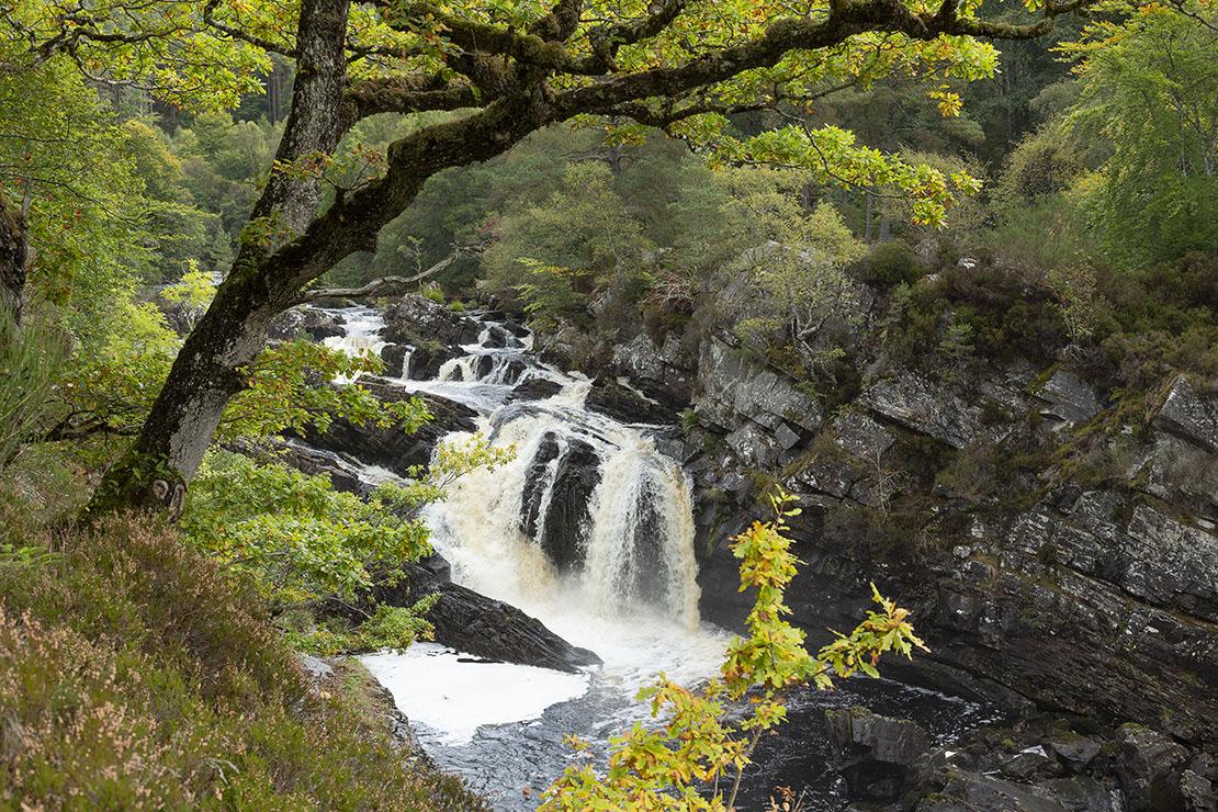 Main view of Rogie Falls.