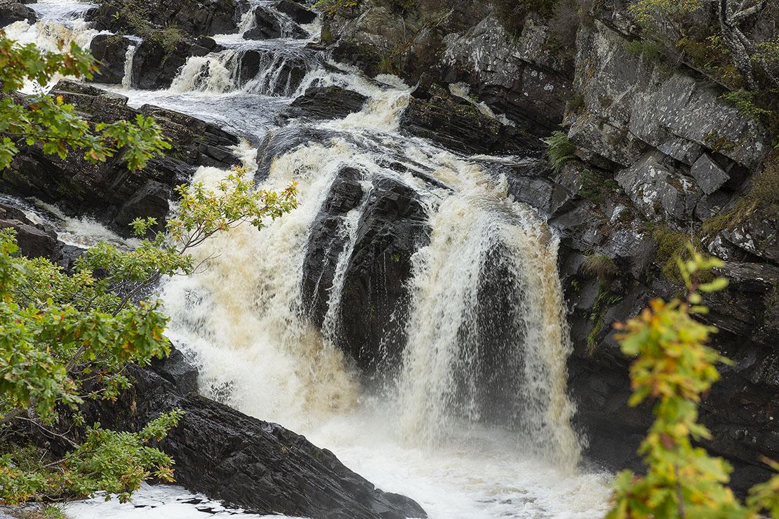 Falls of Rogie, great photos, salmon ladder