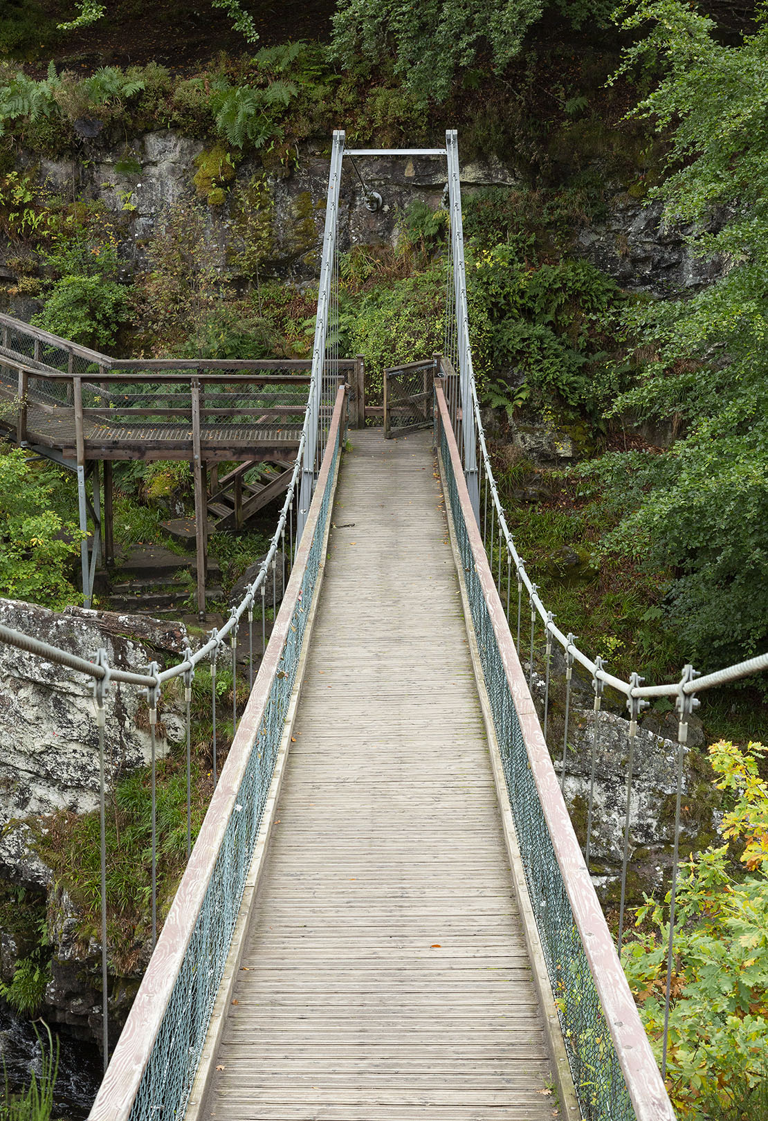 Another view directly down the suspension bridge.