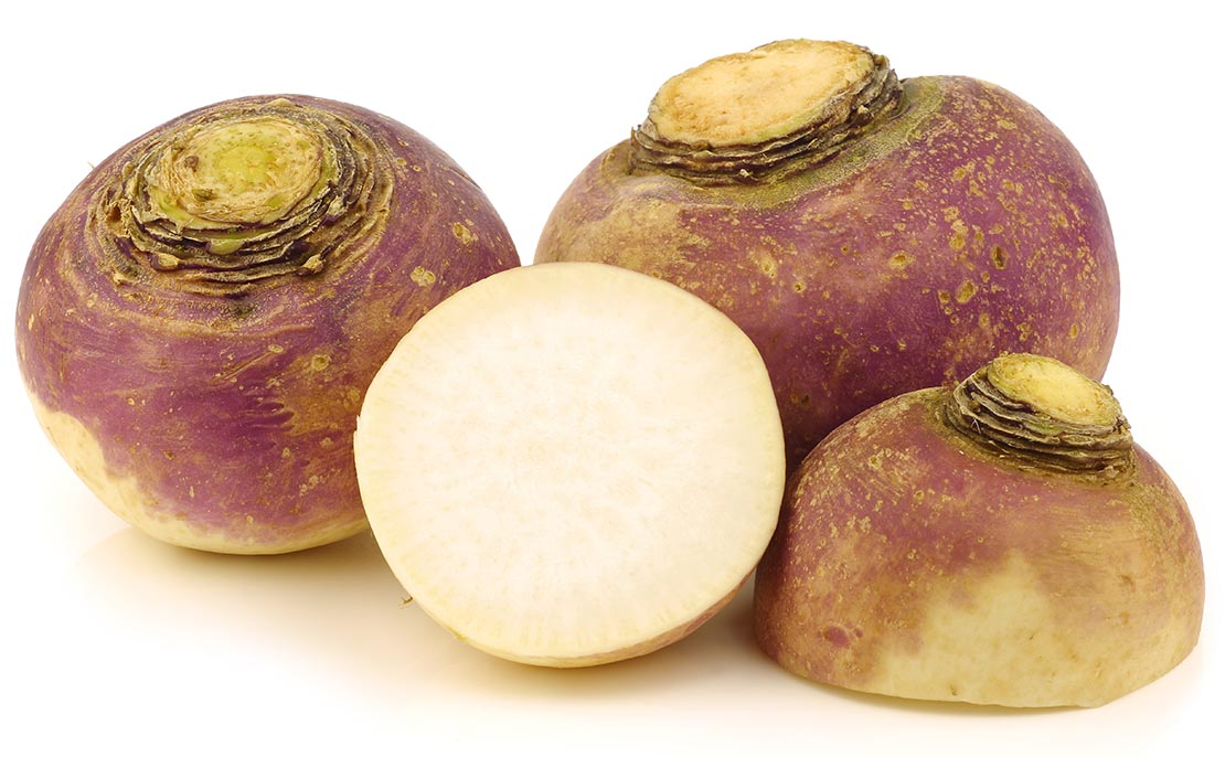 Neeps swedes cross section, used in Scottish Recipes